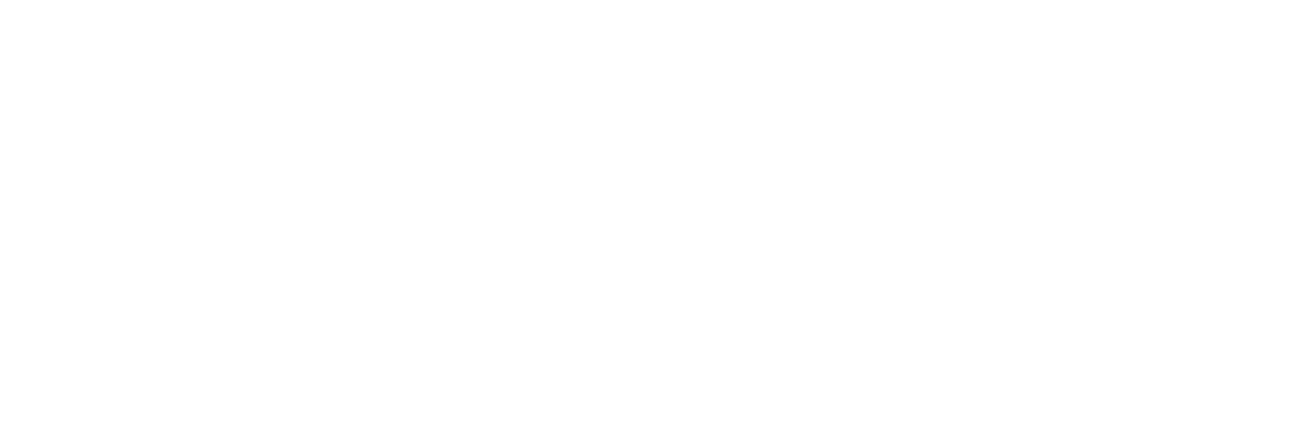 expert-services-logo